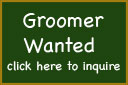 graphic for groomer employement